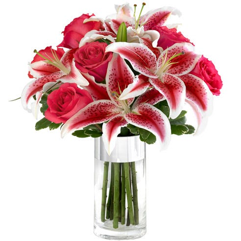 Hot pink roses and Stargazer lilies in a glass silver banded vase
