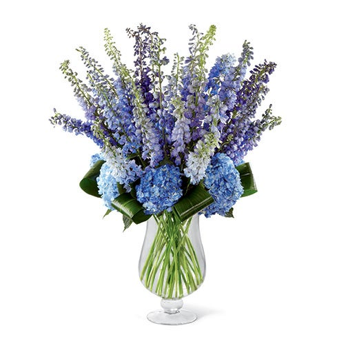 High end bouquet of blue delphinium, purple delphinium, dark blue hydrangea, and aspidistra leaves in a superior clear glass footed vase