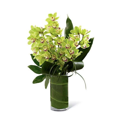 Boss's Day gift ideas and huge green orchid arrangement