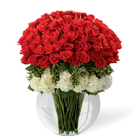 Over 6 dozen stems of premium long-stemmed red roses arranged with white hydrangea and green hypericum berries in a superior clear glass pillow vase