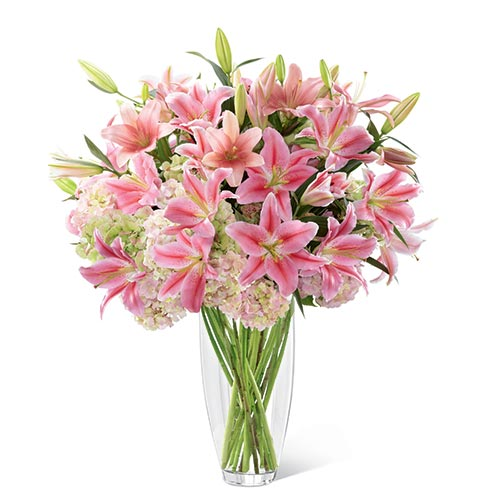 Pink Oriental lilies, pink Asiatic lilies, and blush hydrangea in a superior clear glass 14-inch tapered vase