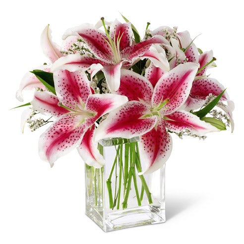 Im sorry flower delivery with red stargazer lilies