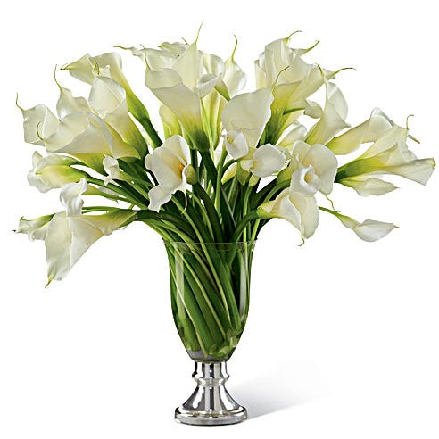 Calla Lilies delivered in a artful arrangement for the holiday season