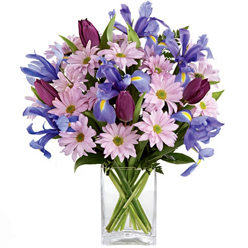 Send flowers and cheap flowers for a cheap flower delivery
