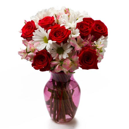 red rose white daisy bouquet with pink alstroemeria in a pink glass vase