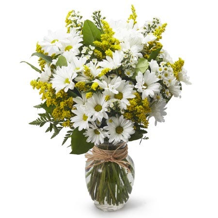 White daisy and yellow solidago bouquet, same-day daisy delivery cheap