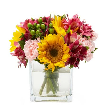 Square summer sunflower bouquet with sunflowers, hot pink alstromeria & berry