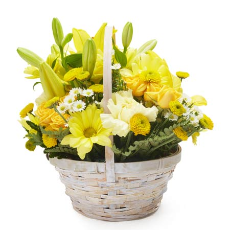 Symphony yellow flowers basket at send flowers yellow daisy bouquet and flowers in a basket delivery from send flowers online mightylinksfo
