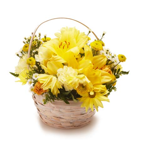 Yellow flower basket arrangement of yellow lilies, yellow spray roses and yellow daisies