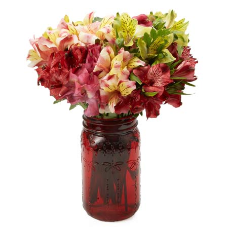 Mixed alstroemeria flower bouquet with red, green, peach and yellow alstroemeria