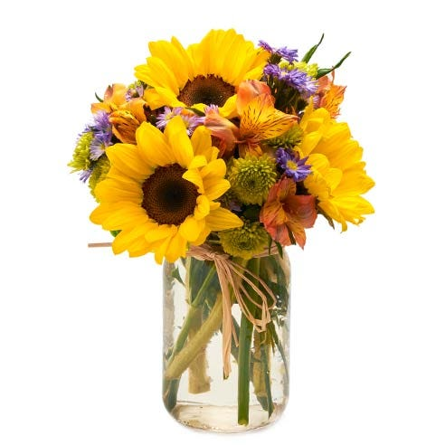 cheap sunflowers delivery, large sunflowers inside a mason jar arrangement