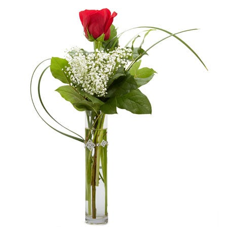 One single red rose bouquet for same day delivery roses at Send Flowers