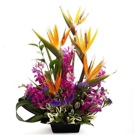 Luxury birds of paradise flower bouquet