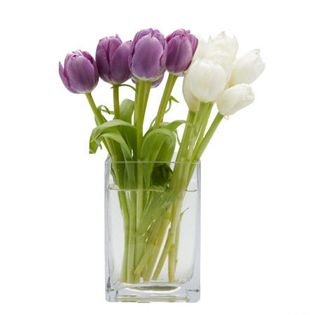 Modern White Tulip And Purple Tulips Bouquet