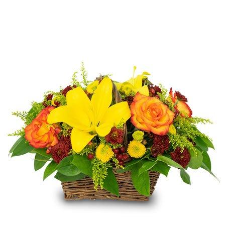 Autumn's Basket of Bounty