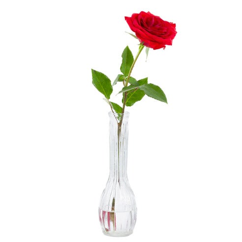 Valentine's Day bouquet delivery single long stem red rose delivery