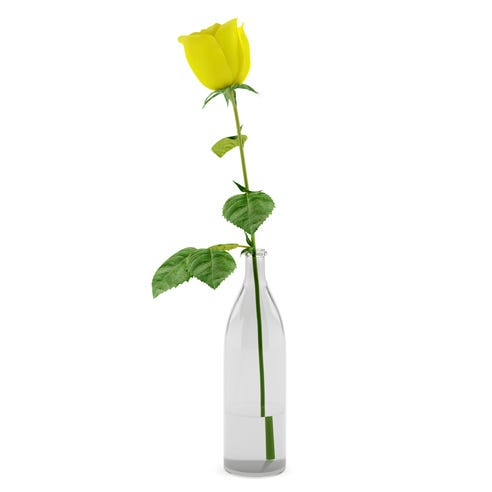 One single yellow rose bouquet inside a tall slim glass flower vase