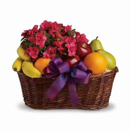 Delivered fruits basket for fathers day with fruits and azalea plant delivery