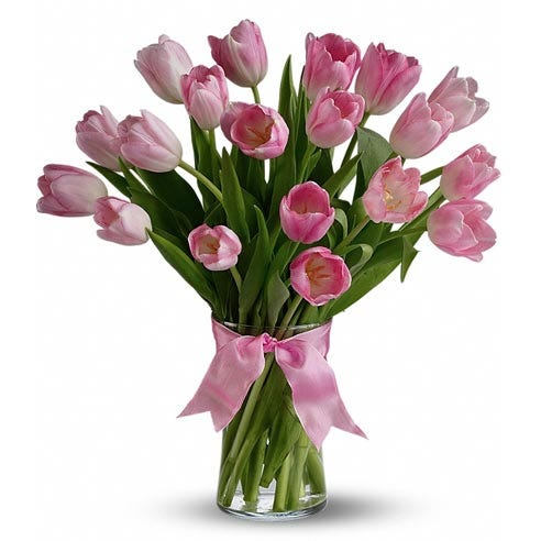 All pink tulips in a glass vase with a bow
