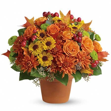 Mixed bouquet for same day flowers delivery with orange roses, orange flowers & orange mums