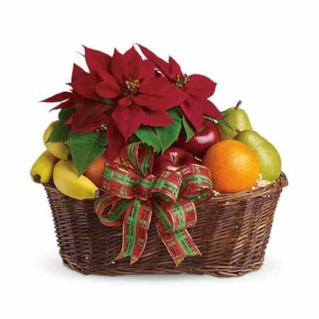 Best holiday gift basket with fresh fruit, plaid bow and poinsettia plant delivery