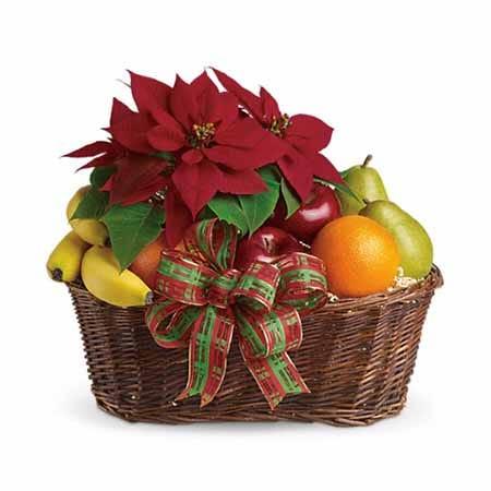 Christmas poinsettia fruits gift basket