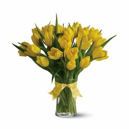 Yellow tulips dleivery same day with delivered yellow tulips flowers in a vase
