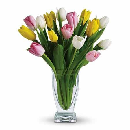 Tulip Bouquet delivery and tulips delivery from send flowers in glass vase
