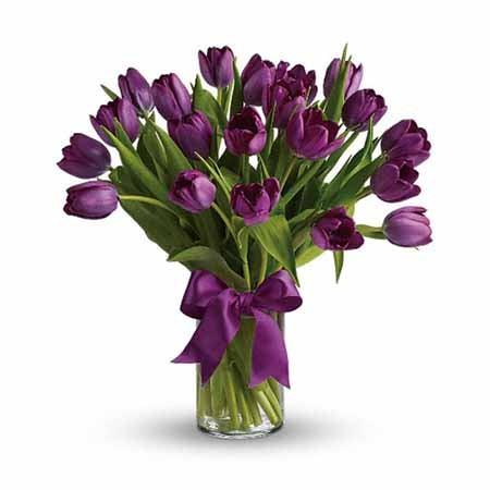 Purple Tulips At Send Flowers