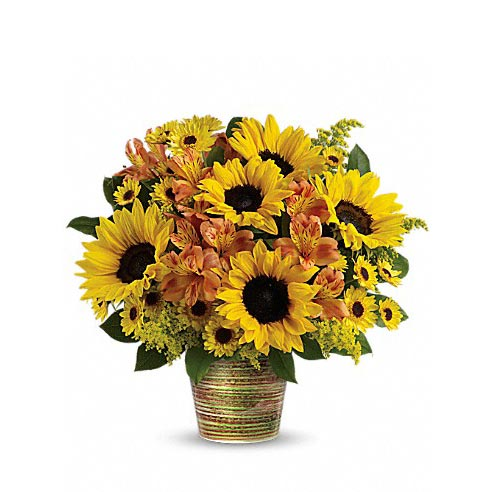 Sunflower planter delivery and sunflower plant delivery online