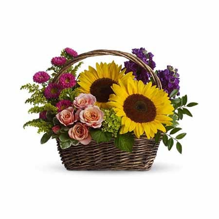 Mixed sunflowers, purple stock, green hydrangea and peach rose basket bouquet
