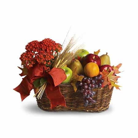 Kalanchoe plant and fall fruits gifts basket with grapes, oranges, pears, apples