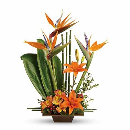 topiary flowers arrangement with birds of paradise topiary