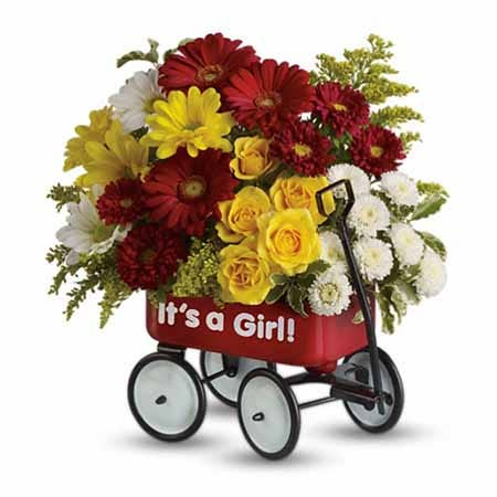 Its a girl newborn baby wagon flowers bouquet with red wagon and It's a girl text