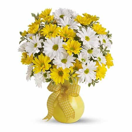 yellow and white daisy bouquet delivery with traditional daisies and yellow daisy flowers