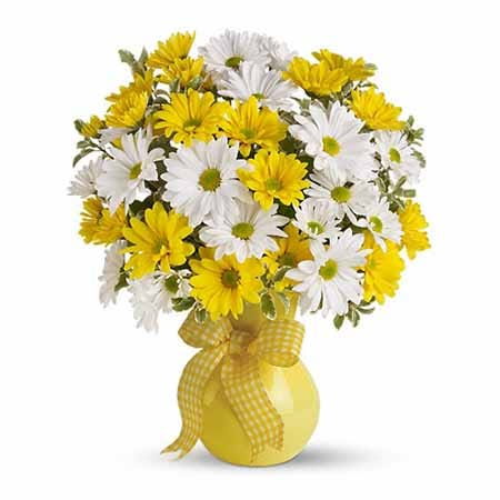 yellow and white daisy bouquet flowers for sunday delivery
