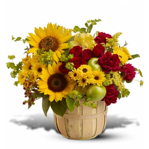 Same day sunflower delivery and yellow sunflower bouquet inside a basket