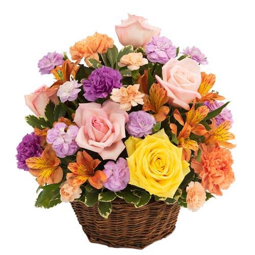 Spring Has Sprung Rose Basket