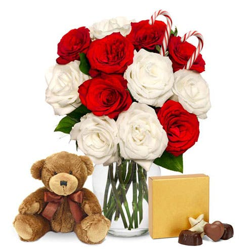 One Dozen Candy Cane Roses with Chocolates and Bear