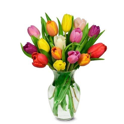 15 Rainbow Tulips Bouquet
