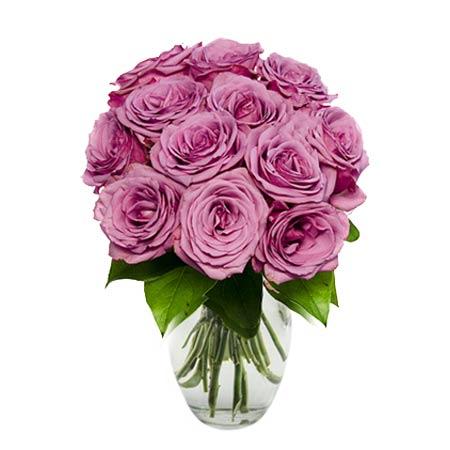 One Dozen Purple Roses