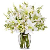 Lovely White Lily Arrangement