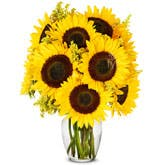 Summer Sunflower Bouquet - Premium