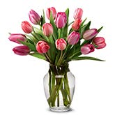Perfetta Pink Tulips Bouquet