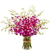 Pink Orchids Bouquet