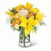 Positivity Bouquet