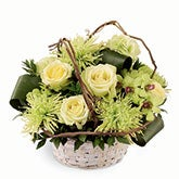Jade Green Roses Bouquet of Splendor