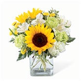 Sunflower And Carnation Bouquet