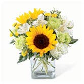 Contemporary Sunshine Arrangement