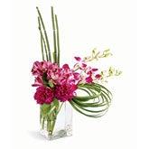 Island Getaway Modern Bouquet